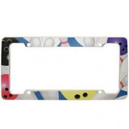 License Plate Bowling Frame